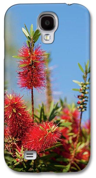 Usa, Florida, New Smyrna Beach Galaxy S4 Case by Lisa S. Engelbrecht