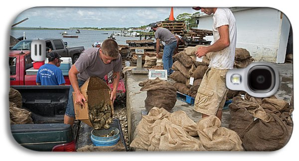 Weighing Harvested Oysters Galaxy S4 Case