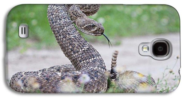 Western Diamondback Rattlesnake Galaxy S4 Case