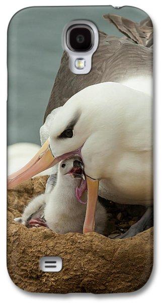 South America, Falkland Islands Galaxy S4 Case