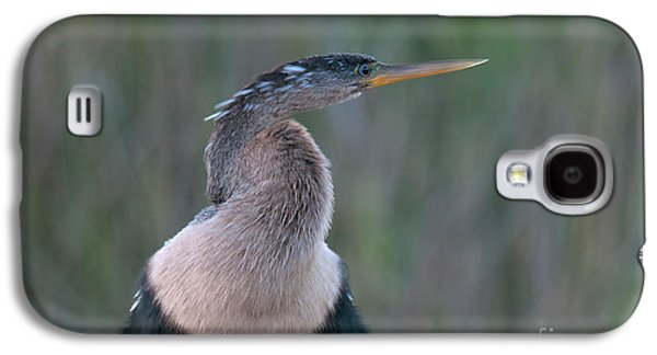 Anhinga Galaxy S4 Case by Mark Newman