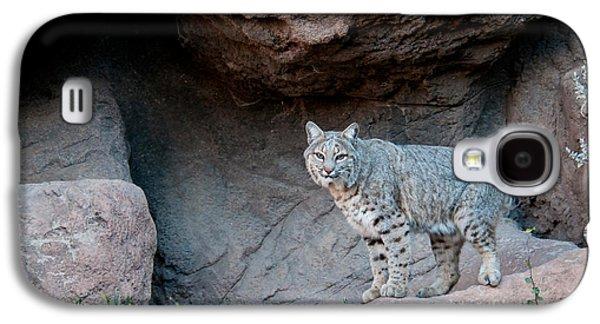 Bobcat Galaxy S4 Case by Mark Newman