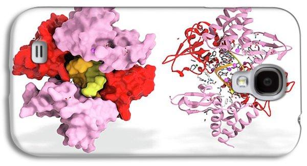 Ebola Viral Protein 35 And Rna Galaxy S4 Case by Ramon Andrade 3dciencia
