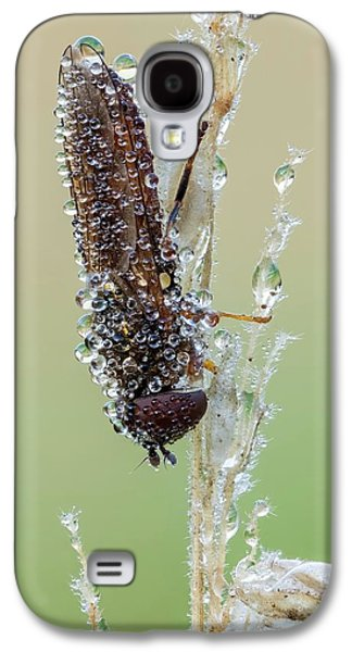 Hoverfly Galaxy S4 Case