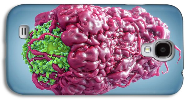 Macrophage Engulfing Cancer Cell Galaxy S4 Case by Maurizio De Angelis