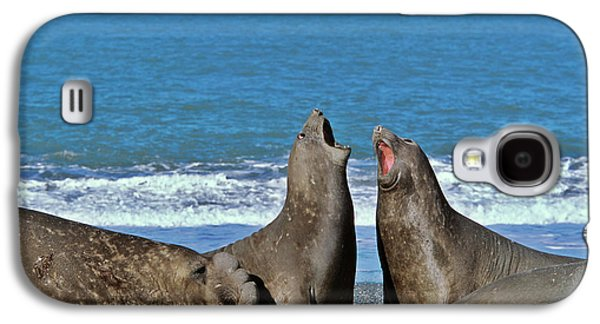 Southern Elephant Seal Female (cow Galaxy S4 Case by Martin Zwick