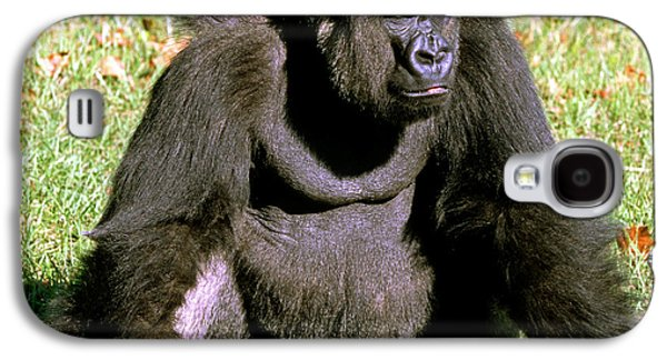 Adult Male Western Lowland Gorilla Galaxy S4 Case