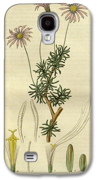 Botanical Print By Sir William Jackson Hooker Galaxy S4 Case