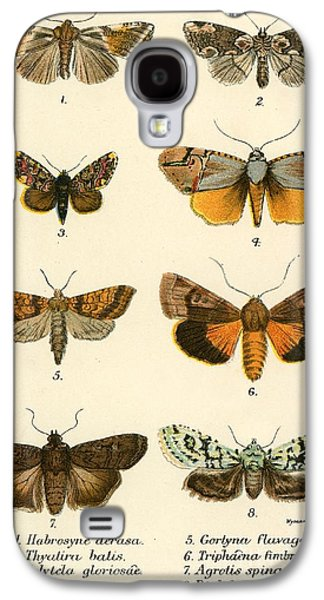 Butterflies Galaxy S4 Case by English School