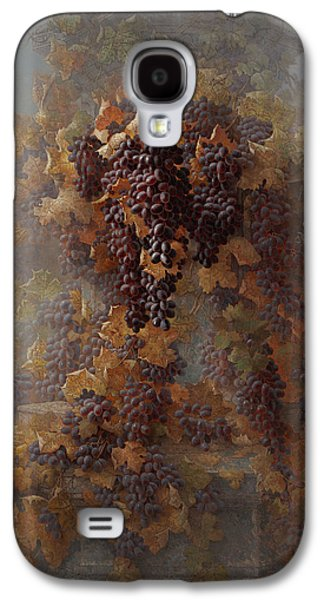 Grapes And Architecture Galaxy S4 Case