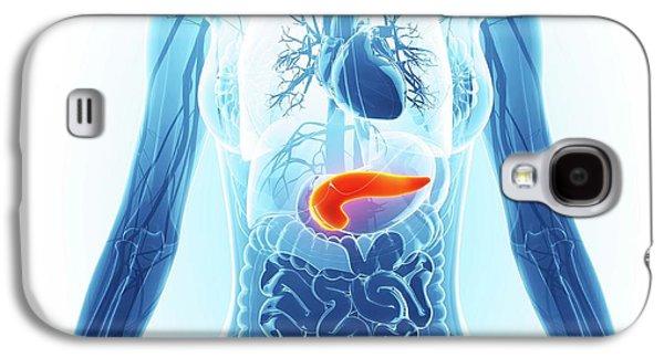 Human Pancreas Galaxy S4 Case by Pixologicstudio