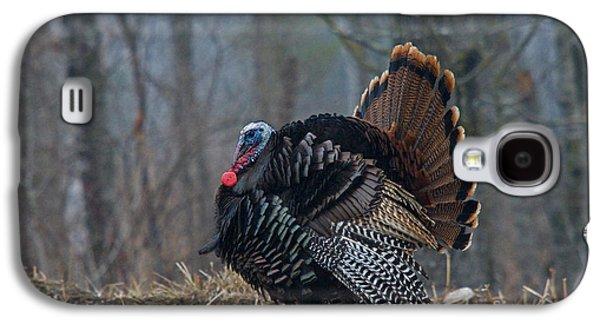 Jake Eastern Wild Turkey Galaxy S4 Case by Linda Freshwaters Arndt