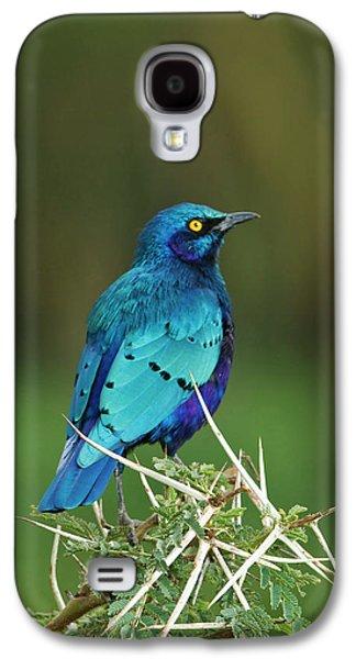 Kenya, Lake Nakuru National Park Galaxy S4 Case