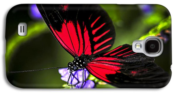 Red Heliconius Dora Butterfly Galaxy S4 Case