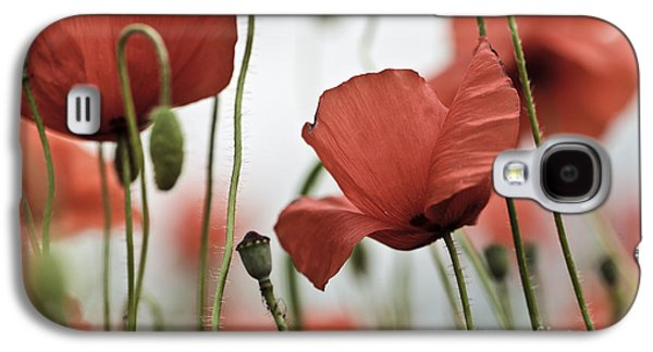 Red Poppy Flowers Galaxy S4 Case by Nailia Schwarz