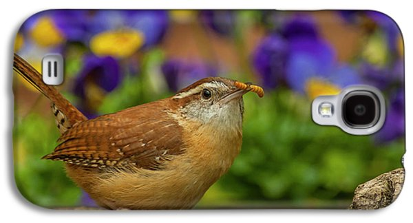 Wren Galaxy S4 Case - Usa, North Carolina, Guilford County by Jaynes Gallery