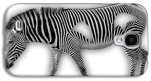 Zebra Collection Galaxy S4 Case by Marvin Blaine