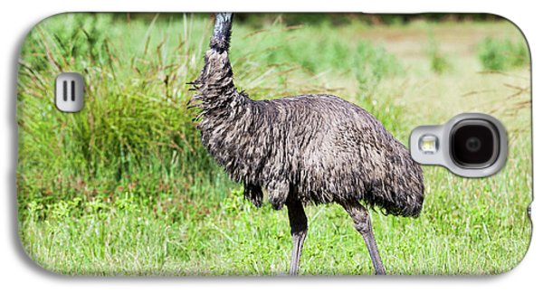 Emu (dromaius Novaehollandiae Galaxy S4 Case by Martin Zwick