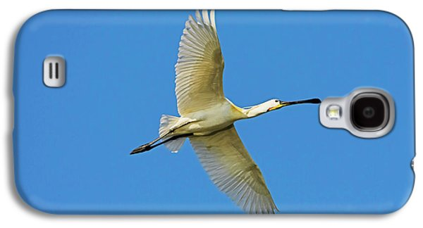 Spoonbill Galaxy S4 Case - Eurasian Spoonbill Or Common Spoonbill by Martin Zwick