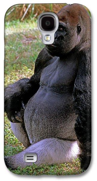 Silverback Western Lowland Gorilla Galaxy S4 Case