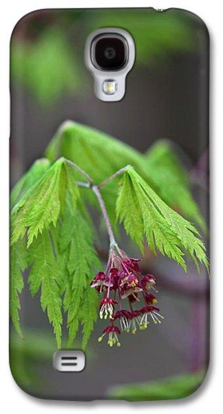Usa, Pennsylvania Galaxy S4 Case by Jaynes Gallery