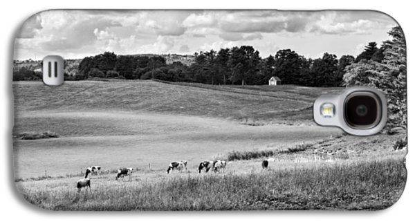 Cows Grazing On Grass In Farm Field Summer Maine Galaxy S4 Case by Keith Webber Jr