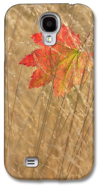 Usa, Washington, Seabeck Galaxy S4 Case by Jaynes Gallery