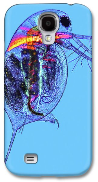Water Flea Galaxy S4 Case by Marek Mis