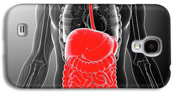 Human Digestive System Galaxy S4 Case by Pixologicstudio