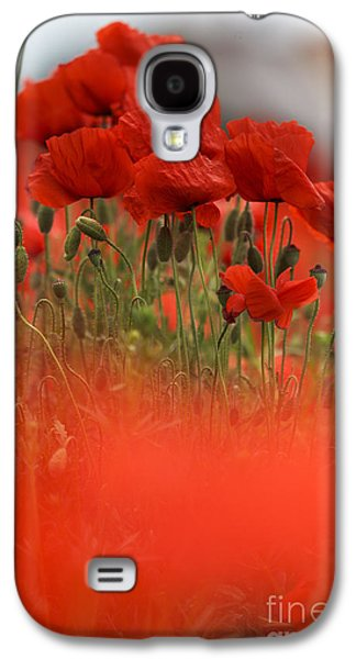 Red Poppy Flowers Galaxy S4 Case by Nailia Schwarz