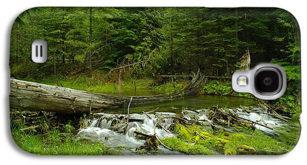 A Beaver Dam Overflowing Galaxy S4 Case by Jeff Swan