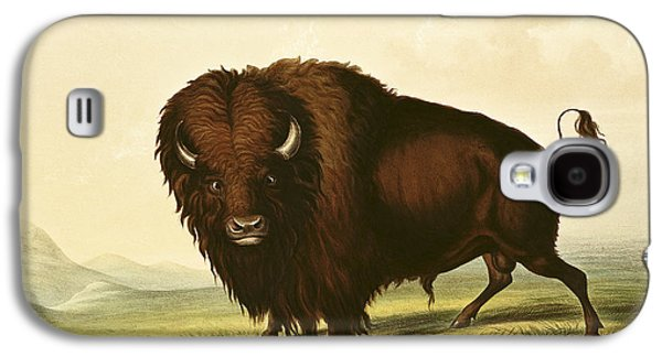 A Bison Galaxy S4 Case by George Catlin