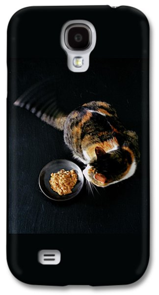 A Cat Beside A Dish Of Cat Food Galaxy S4 Case by Romulo Yanes