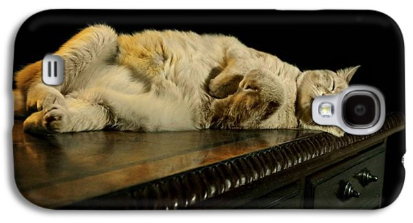 A Cat's Life Galaxy S4 Case by Diana Angstadt