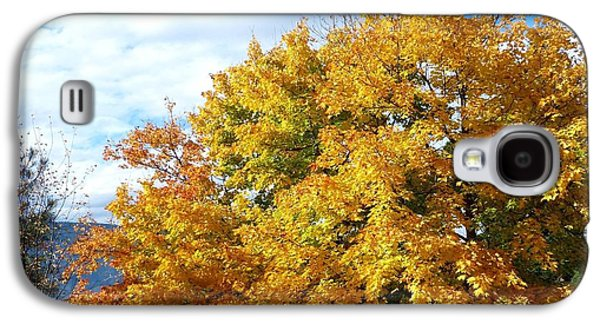 A Chromatic Fall Day Galaxy S4 Case by Will Borden