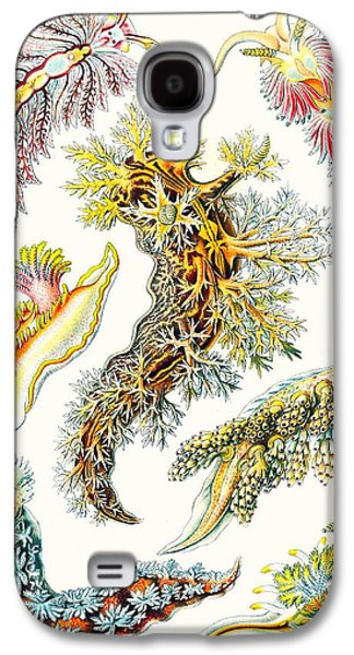 A Collection Of Nudibranchia Galaxy S4 Case by Ernst Haeckel