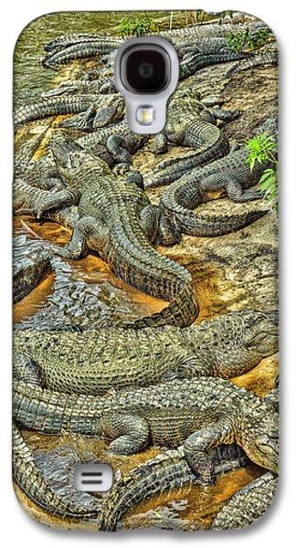 A Congregation Of Alligators Galaxy S4 Case by Rona Schwarz