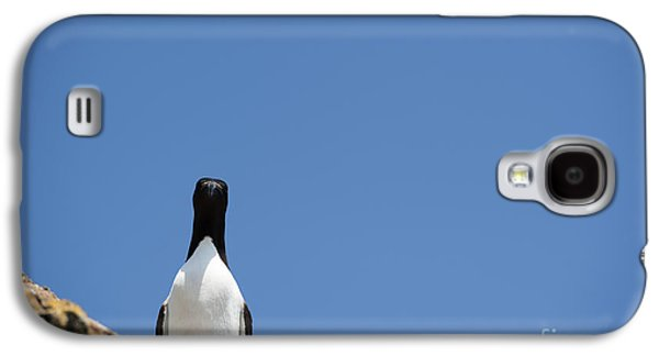 A Curious Bird Galaxy S4 Case