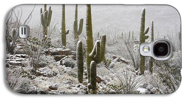 A Desert Blizzard  Galaxy S4 Case