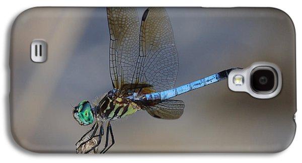 A Dragonfly Iv Galaxy S4 Case