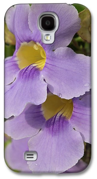 A Flower Blooms In Pedasi On Panama's Galaxy S4 Case by William Sutton