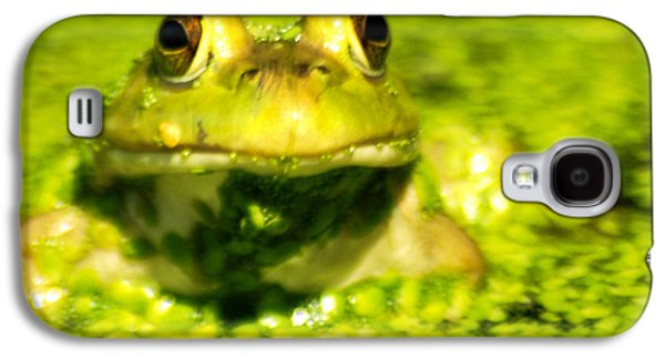 A Frogs Day Galaxy S4 Case by Optical Playground By MP Ray