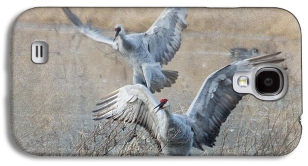 Crane Galaxy S4 Case - A Grand Entrance by Angie Vogel