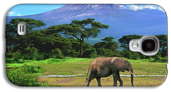 A Lone African Elephant (loxodonta Galaxy S4 Case by Miva Stock