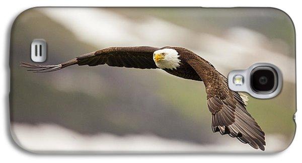 Condor Galaxy S4 Case - A Mature Bald Eagle In Flight by Tim Grams