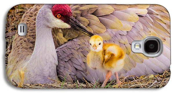 Crane Galaxy S4 Case - A Mother's Lovely Touch by Zina Stromberg