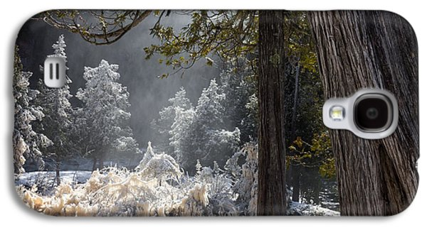 A North Woods Fairy Tale Galaxy S4 Case by Mary Amerman