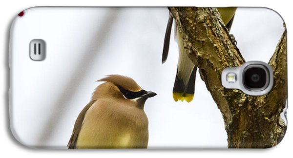 A Pair Of Cedar Waxwings Galaxy S4 Case
