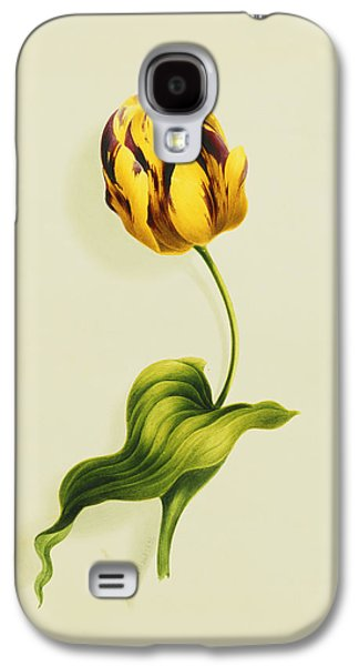 A Parrot Tulip Galaxy S4 Case by James Holland