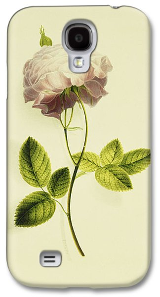 A Pink Rose Galaxy S4 Case by James Holland